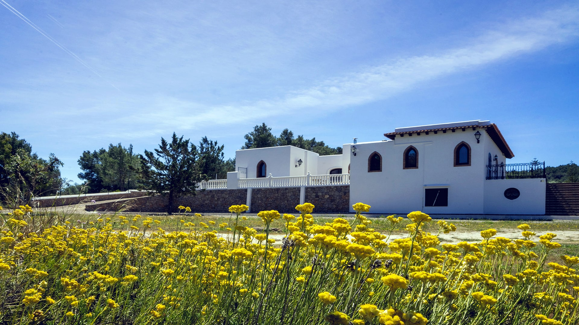 Villa Zaira Ibiza 11