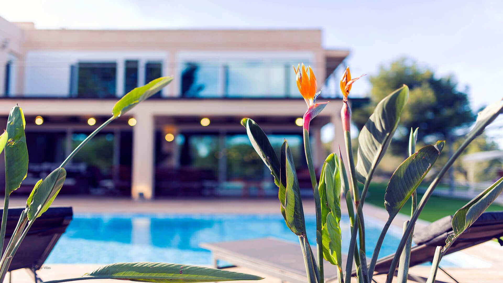 Villa Paissa Ibiza 9 Near Cala Jondal
