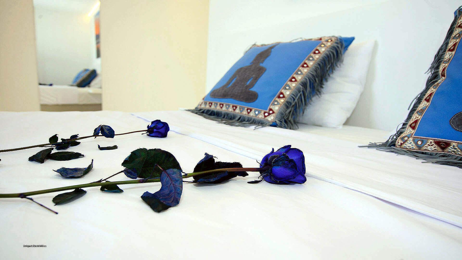 Sa Plana De Baix Ibiza 33 Bedroom 1