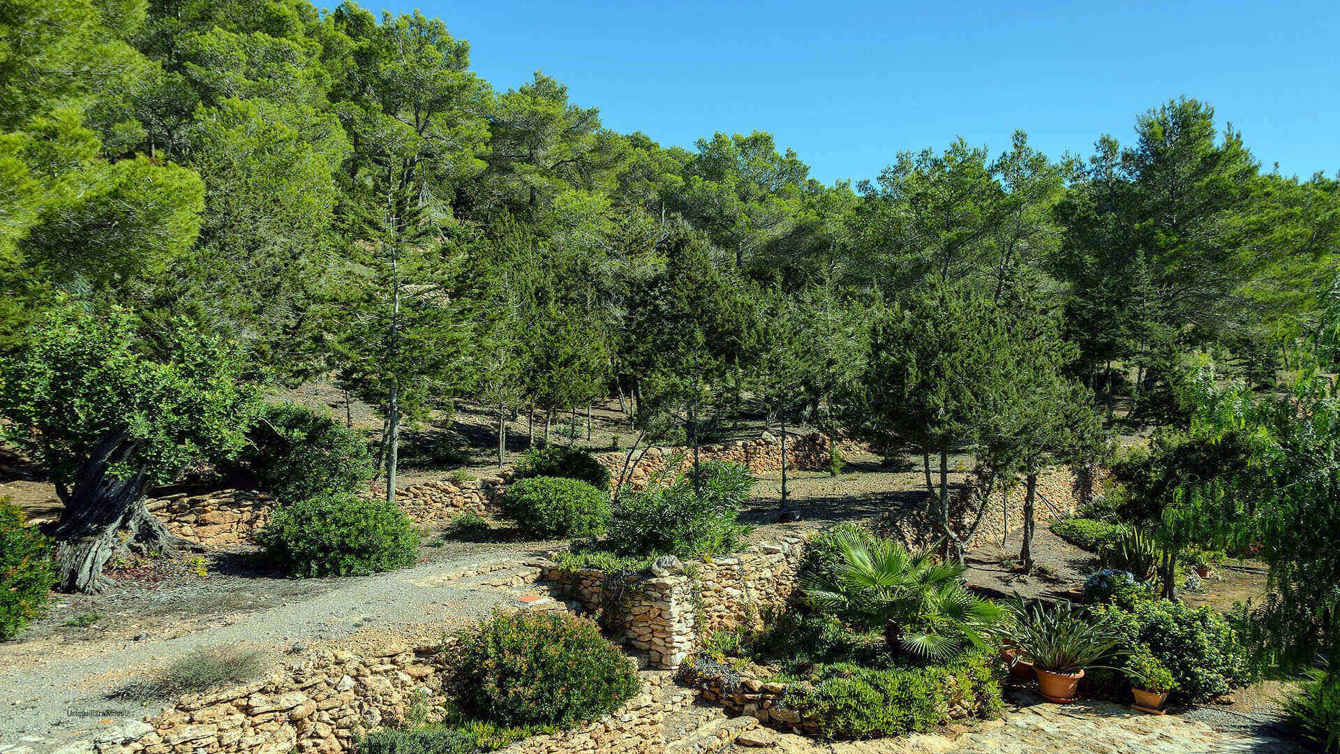 Casa Patri Ibiza 21 San Carlos