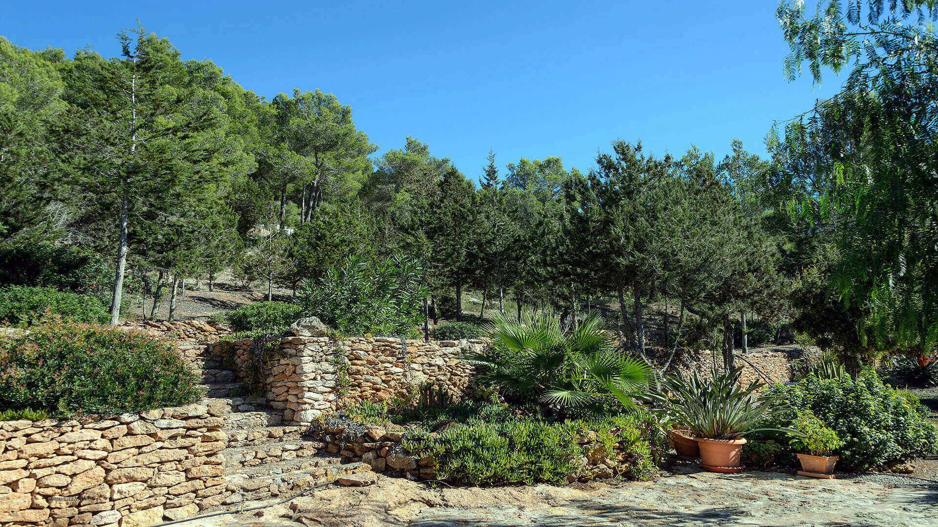 Casa Patri Ibiza 23 San Carlos