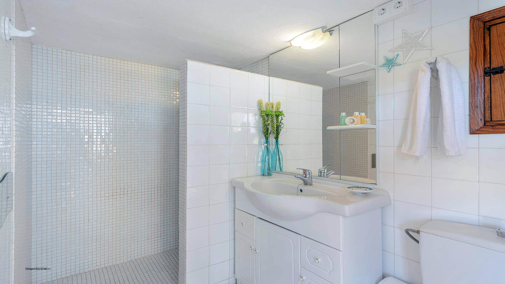 Can Torres Ibiza 46 Bathroom 2