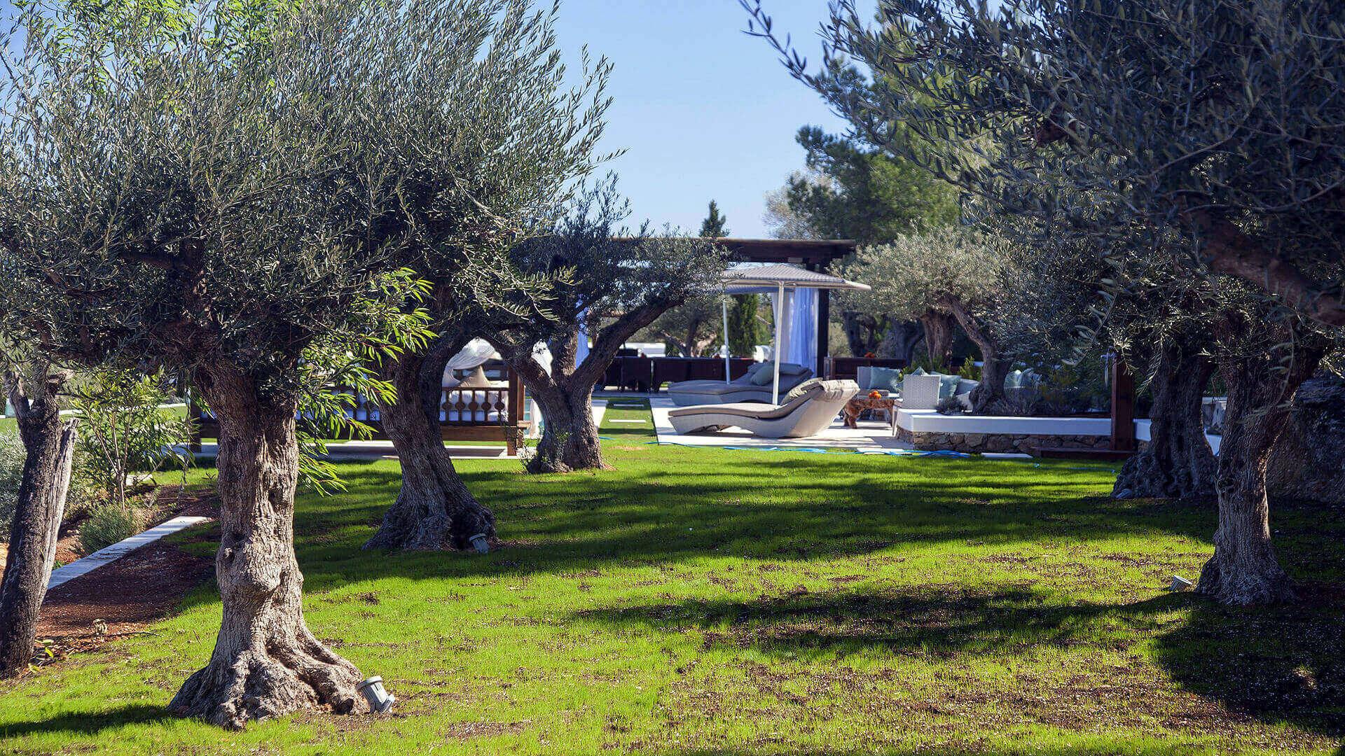 Villa Bes Ibiza 16 San Lorenzo
