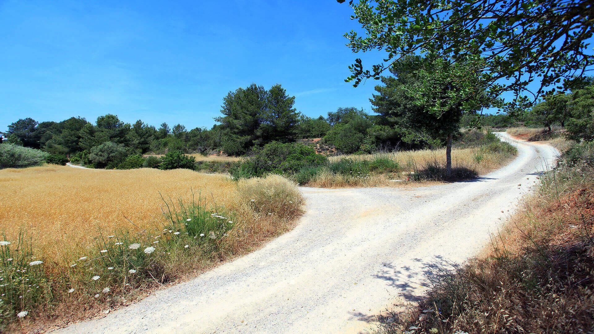 Can Carabasso Ibiza 12 Near Santa Gertrudis