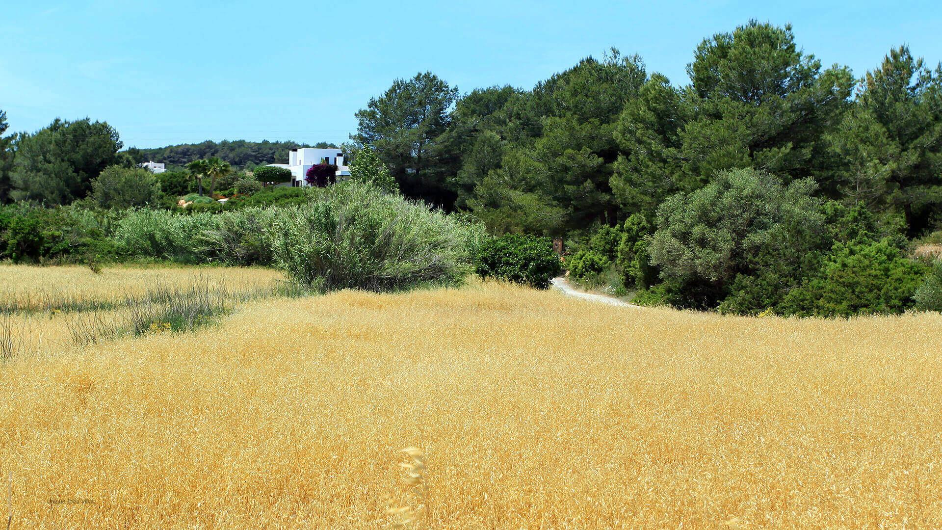 Can Carabasso Ibiza 13 Near Santa Gertrudis