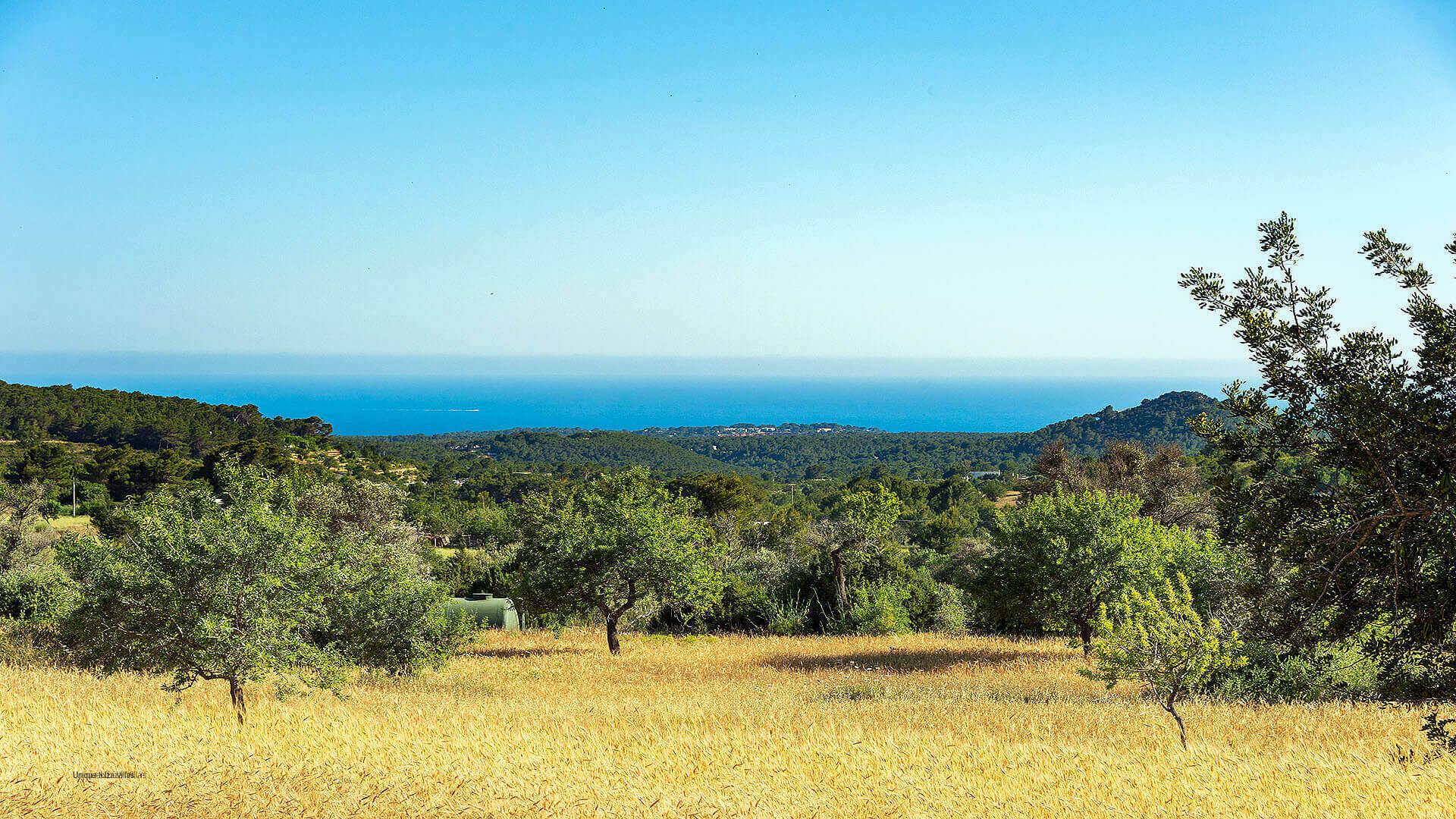 Monte Dalt Ibiza 15 Sant Josep